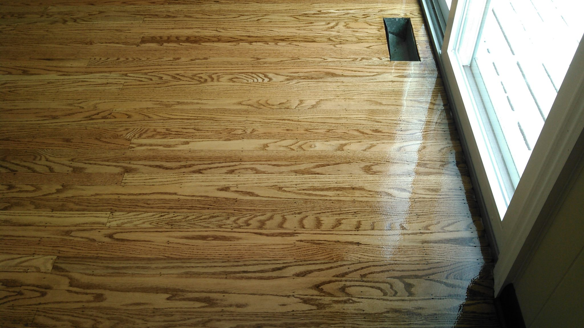 Red Oak After Stained Early American