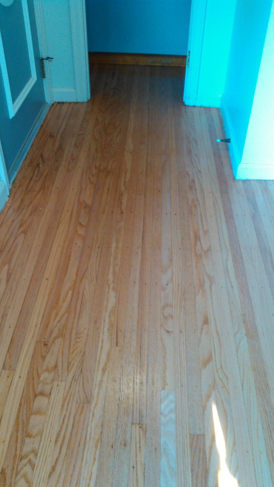 Red Oak After